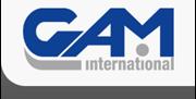 Εικόνα για τον εκδότη GAM